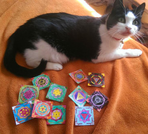 Kitty and the 11 yantras for scale